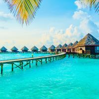 Maldivler & Singapur & Bali